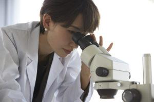 しこり 乳腺線維腺腫 葉状腫瘍 組織検査